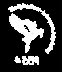 logo-FD.png