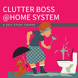 Clutter Boss At Home.png