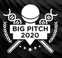 Big Pitch 2020 logo