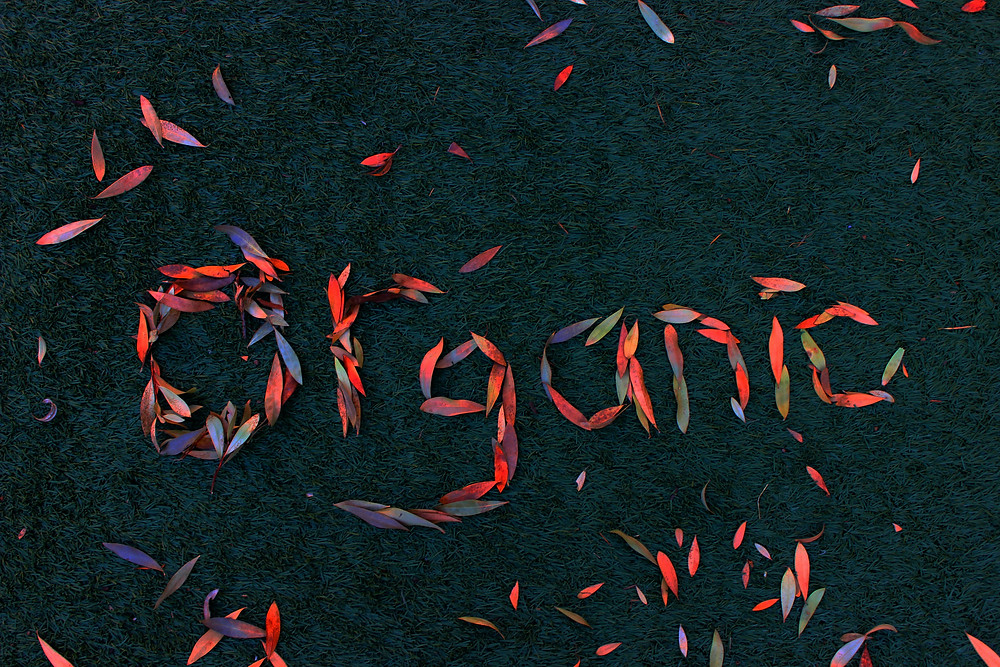 the word organic spelled out with colorful leaves