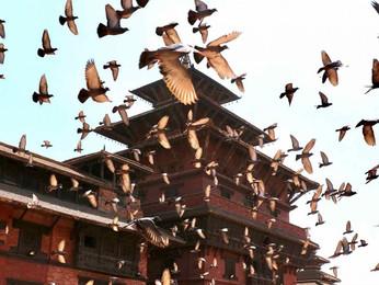 8 motivos para viajar a Nepal