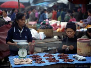 LAOS, La sonrisa de Indochina