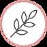 AQUA_icon02.png