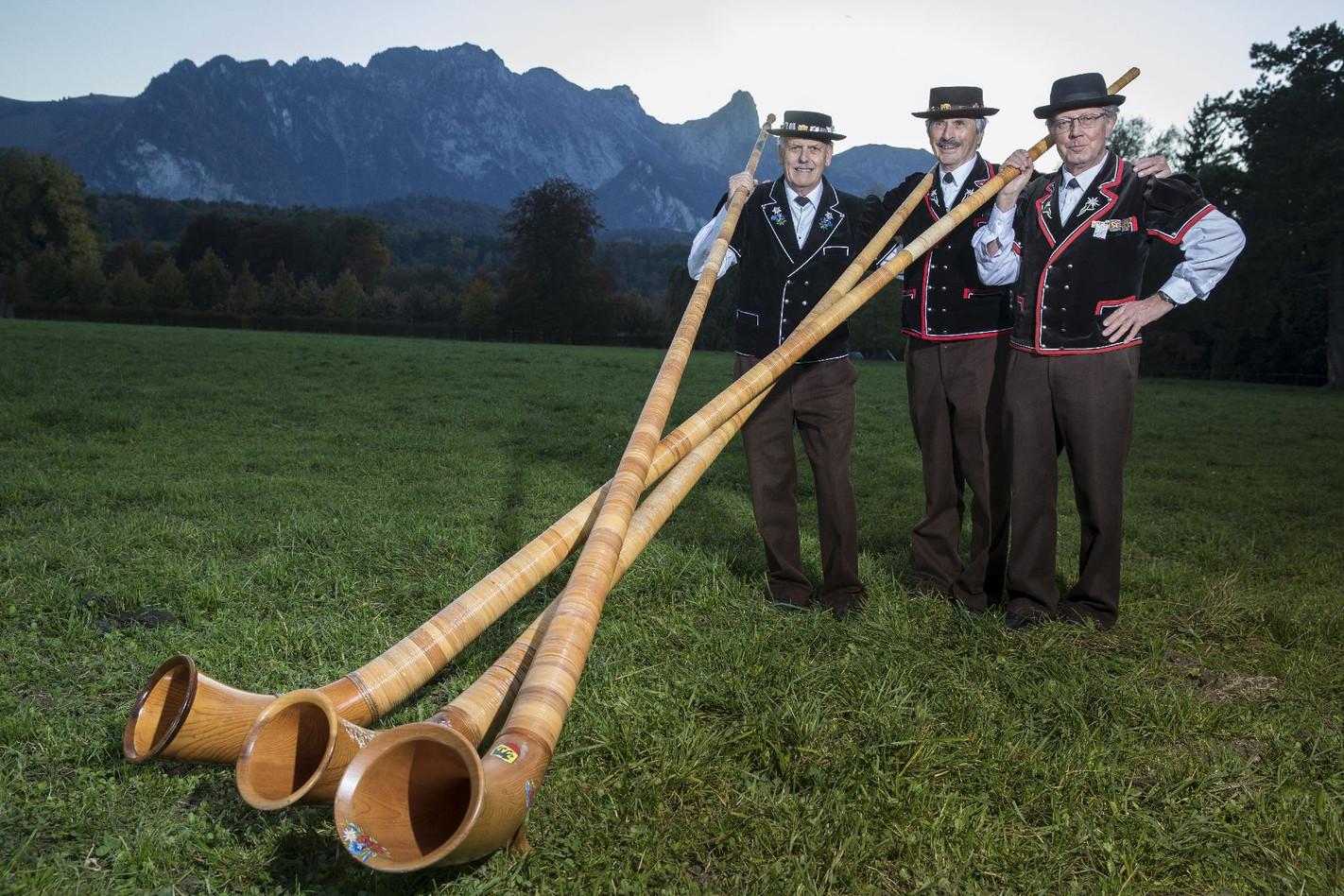 Alphorngruppe Echo vom Stockhorn Thun, Bild 3