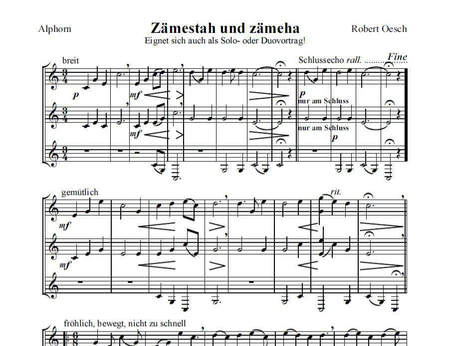 Alphorngruppe Echo vom Stockhorn Thun, Bild 2