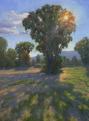 Sharon Weaver, Oil on canvas