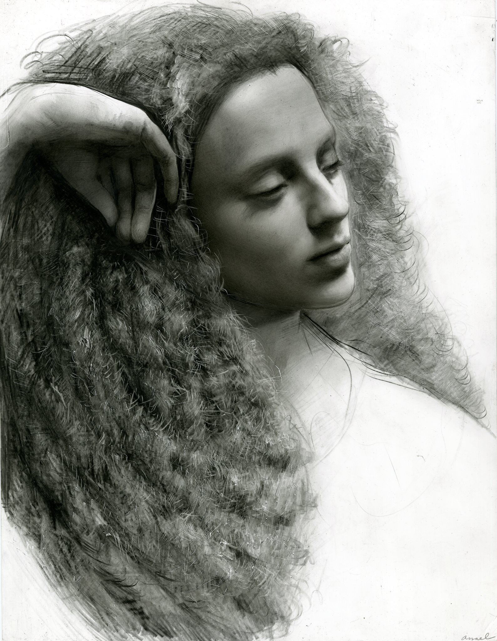 Steven Assael, Graphite on Paper