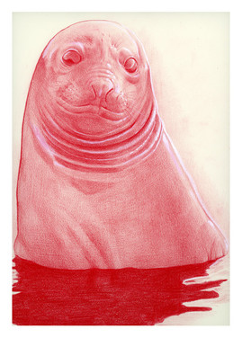 laura-weinberger_elephant-seal-pup-print