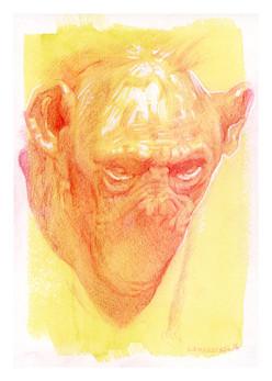 laura-weinberger_bonobo-portrait-red-pri