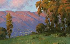Landscape Option 3.JPG