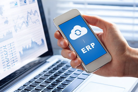 ERP (Enterprise Resource Planning) app o