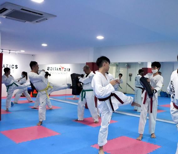 Kickmatics Taekwondo Target Kicking Adult