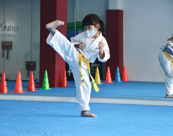 Kickmatics Taekwondo Side Kick