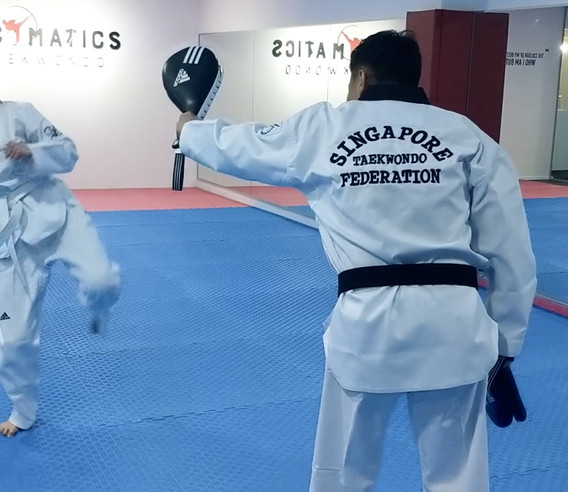 Kickmatics Taekwondo Target Sparring Adult Beginner