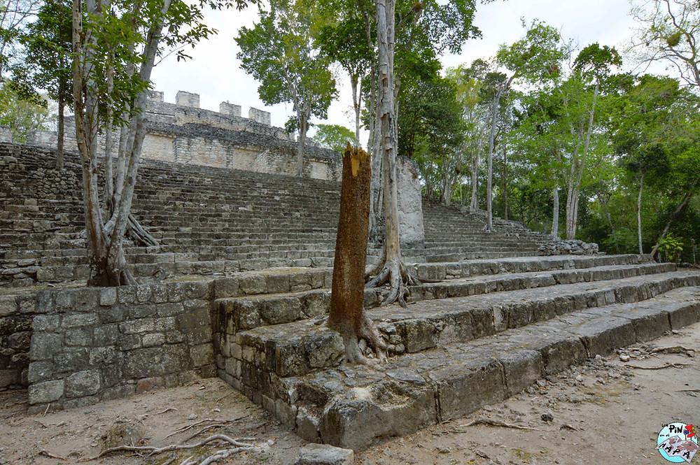 Estructura XIII de Calakmul | Un Pin en el Mapa