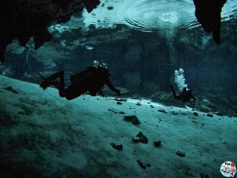 Buceo en el Cenote Dos Ojos: experiencia y consejos