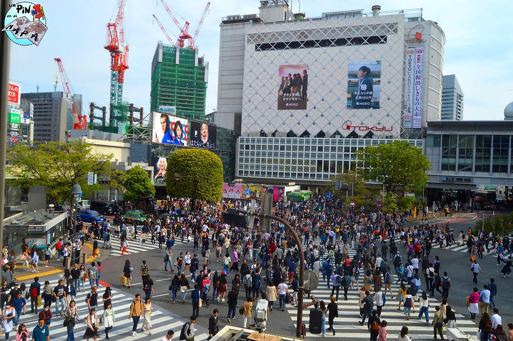 Shibuya, Japón | Un Pin en el Mapa