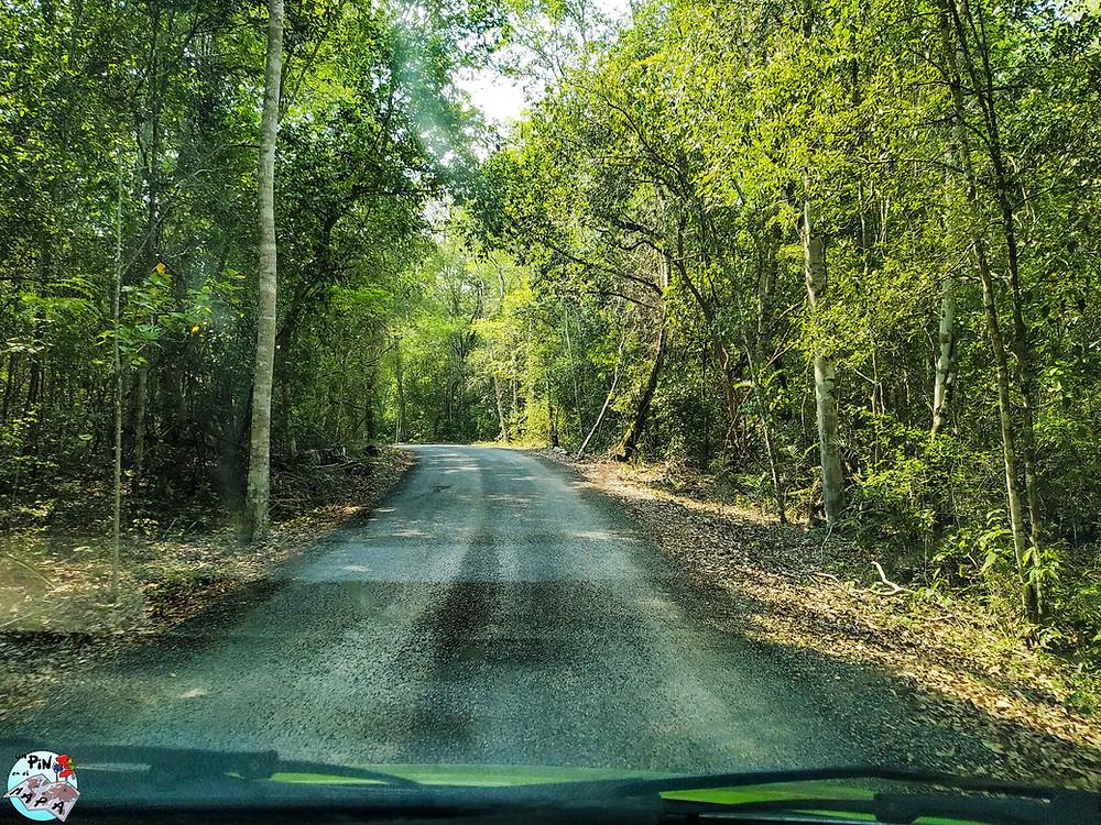 Carretera de Calakmul | Un Pin en el Mapa