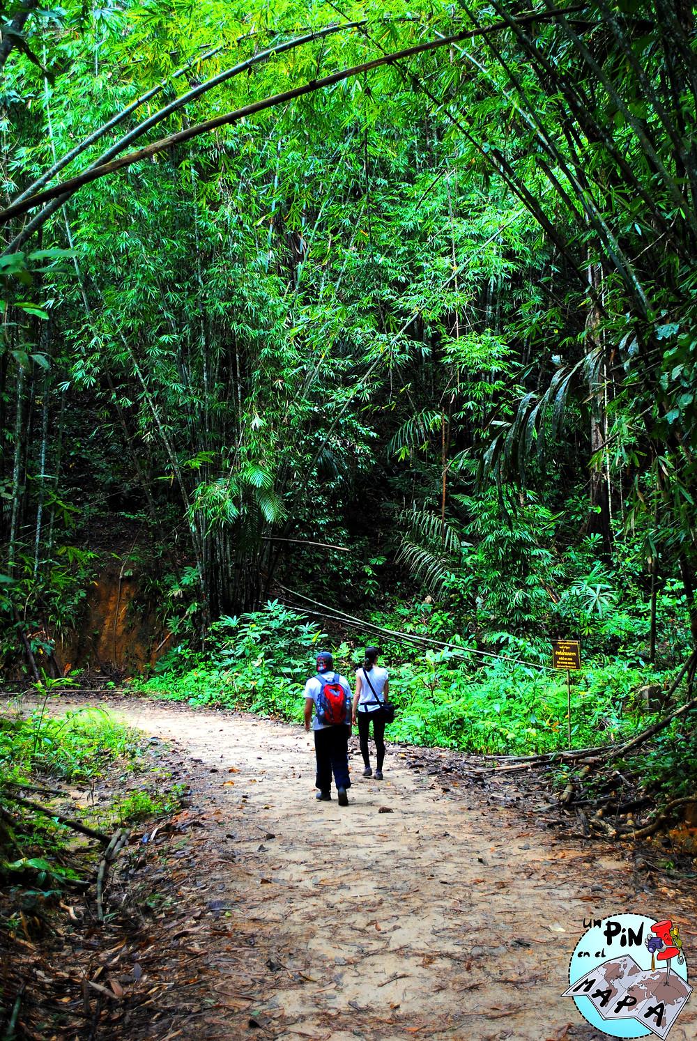 Parque Nacional Khao Sok | Un Pin en el Mapa