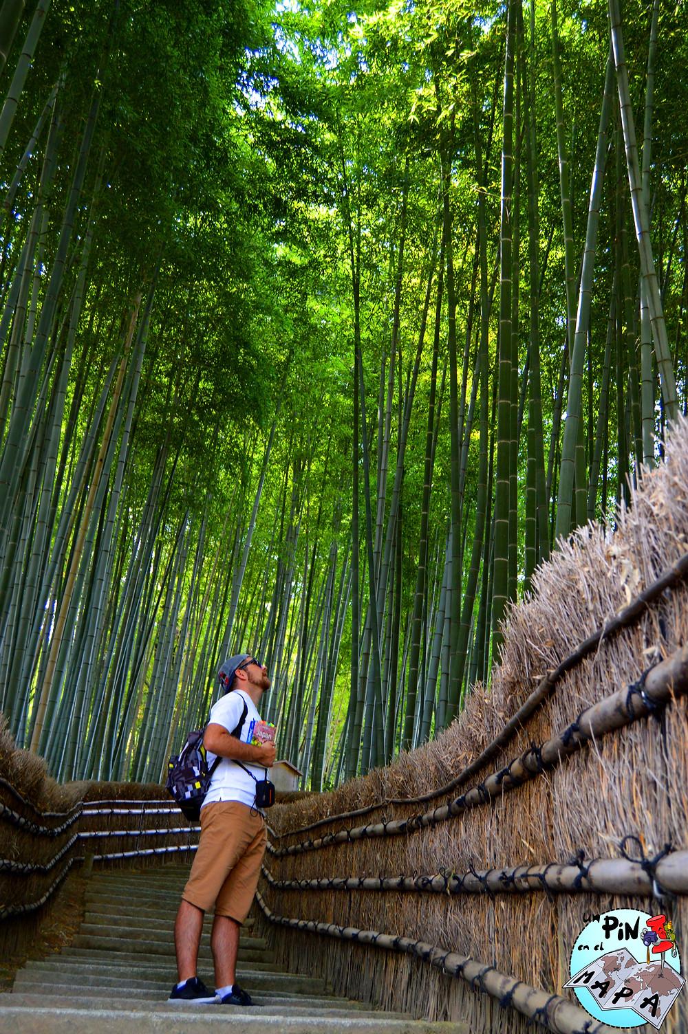 Adashimo Nenbutsu-ji, Arashiyama, Japón | Un Pin en el Mapa
