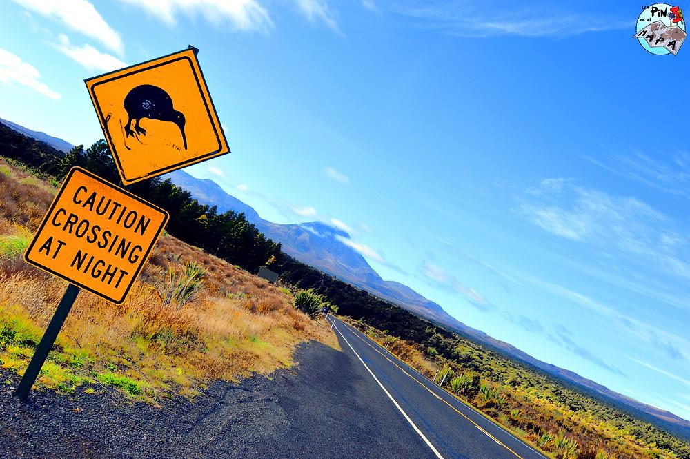 Bordear el Tongariro National Park | Un Pin en el Mapa