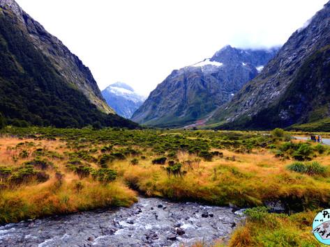Nueva Zelanda: Que ver en la carretera del Milford Sound