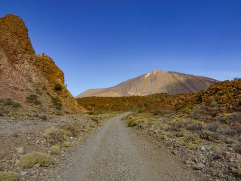 Sendero de las Siete Cañadas del Teide: Ruta e información útil