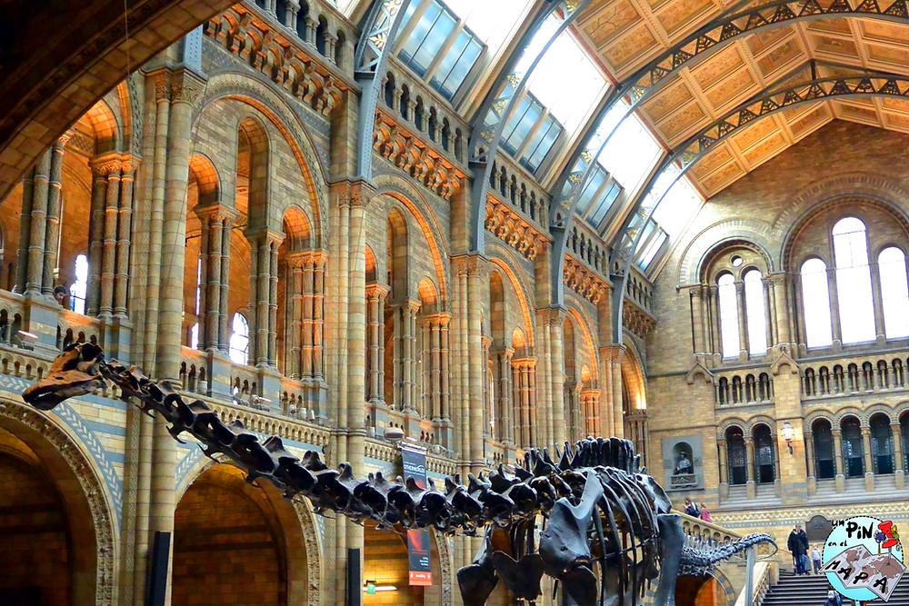 Museo de Historia Natural, Londres | Un Pin en el Mapa