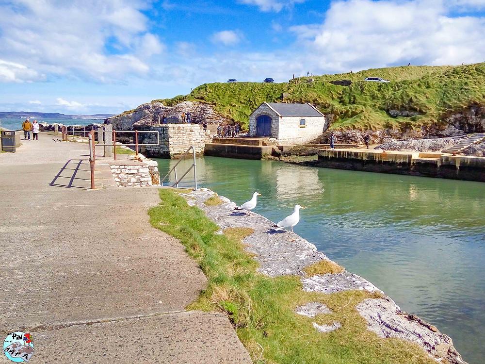 Puerto de Ballintoy | Un Pin en el Mapa