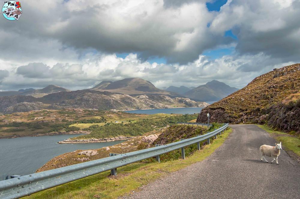 Carretera C1091, NC500, Escocia | Un Pin en el Mapa