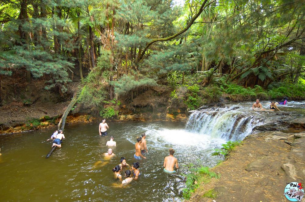 Kerosene creek, Nueva Zelanda | Un Pin en el Mapa
