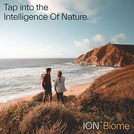 ION_Biome_Web_Banners_Square_Tap_Into_06