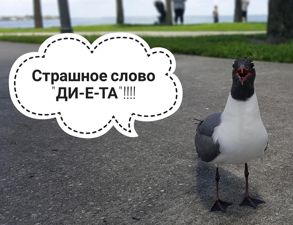 кето диета, ketogenic.ru
