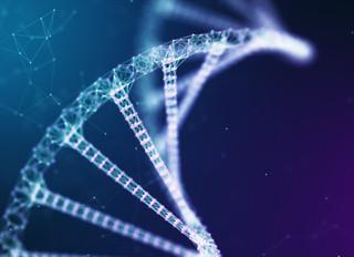 Топ-11 генов успеха кето диеты.