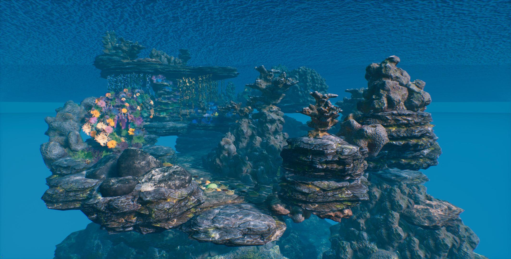 coral reef mer.jpg