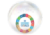 SDGbubble_website.png