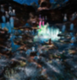 Dead coral best_website_1.jpg