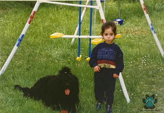 Yuval and Dopey (1996)