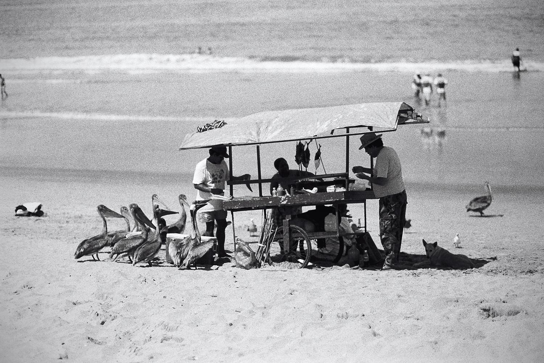Nayarit Beach