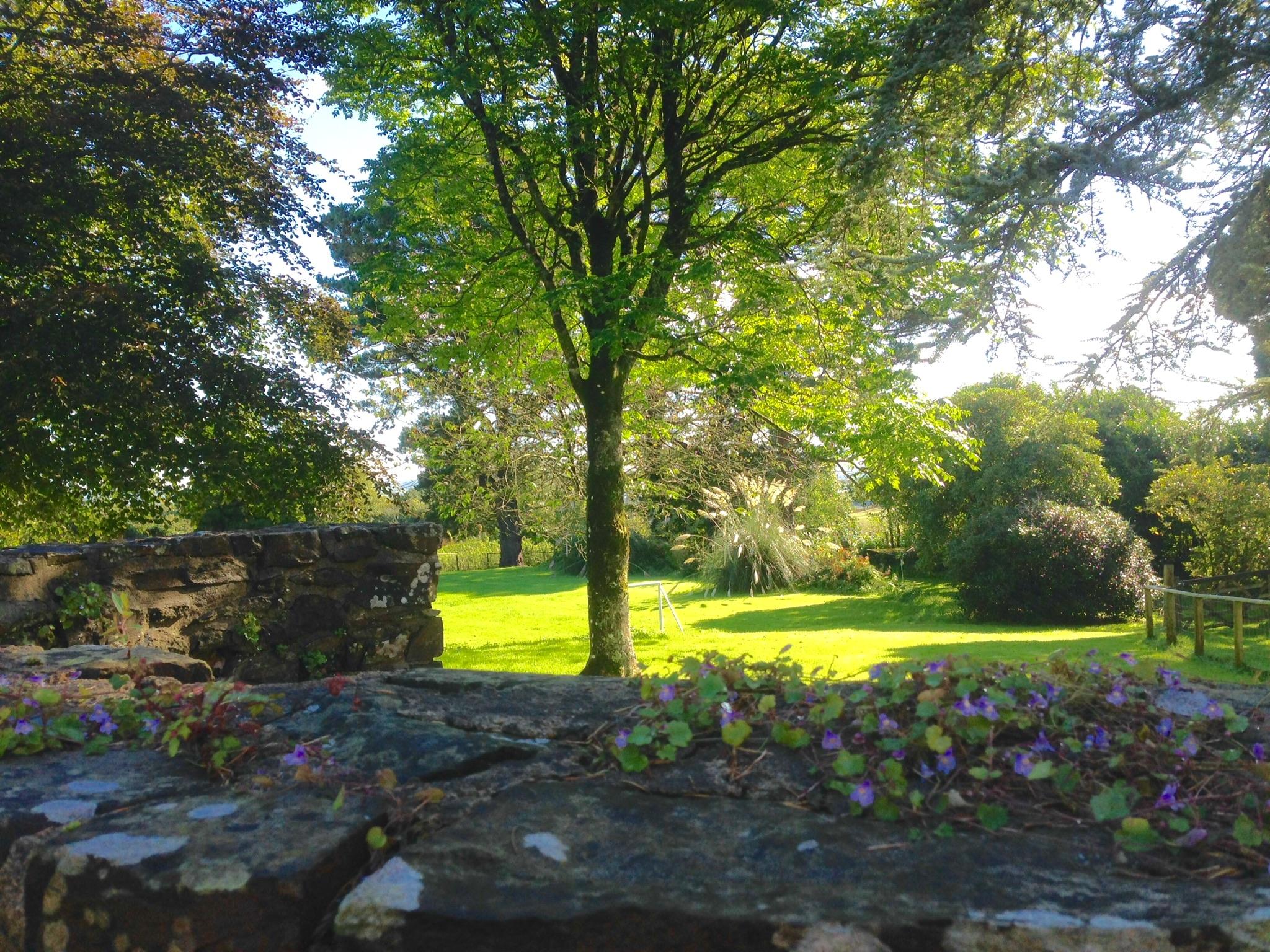 halfround gardens