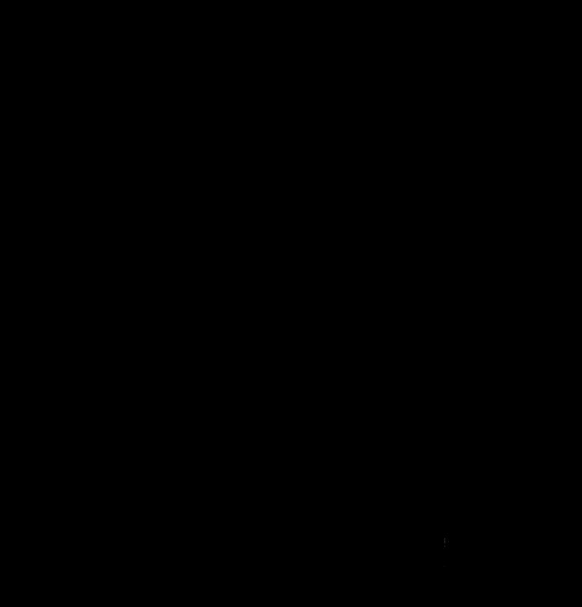 Holz Transparent