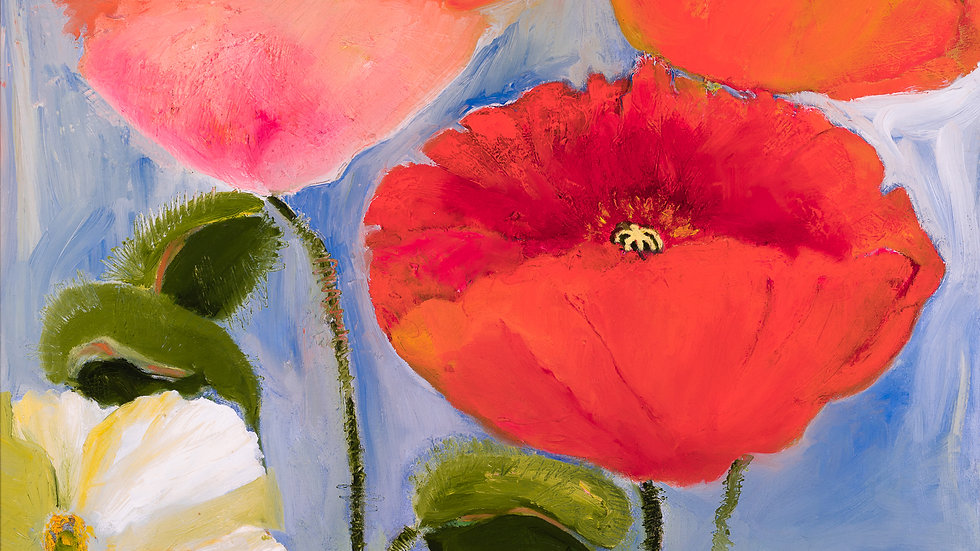 Iceland Poppies: Framed: Oil