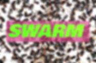 swarm promo edit (1).jpg