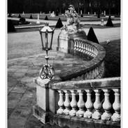 Kodak_TMax_100_10_CO1 1 Kopie.JPG