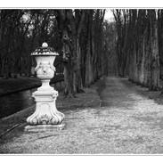 Kodak_TMax_100_132_CO1 Kopie.JPG