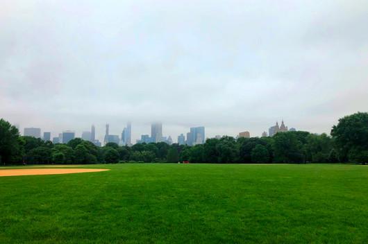 City Skyline Looms Over
