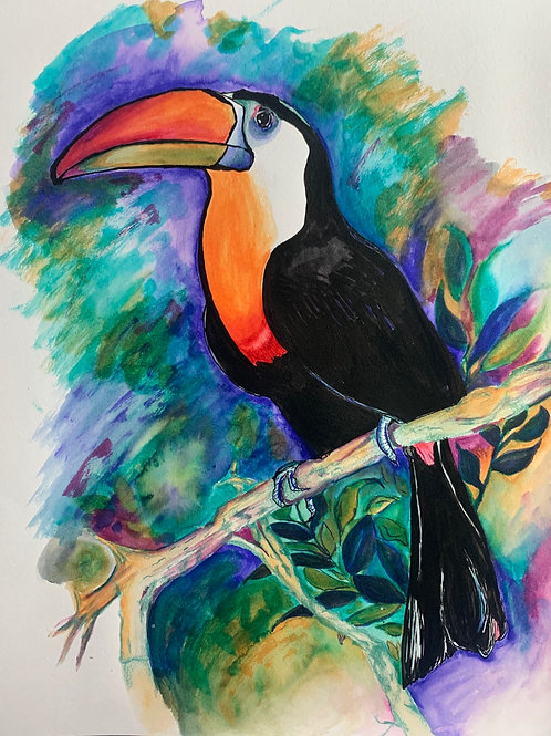 Tucan Bird Watercolor and Pen 8*10