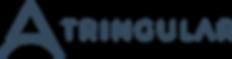 Tringular Logo