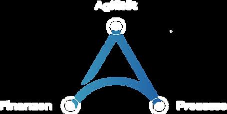 Tringular Agile Finanzen & Prozesse