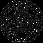 Logo_IVBV-removebg-preview.png